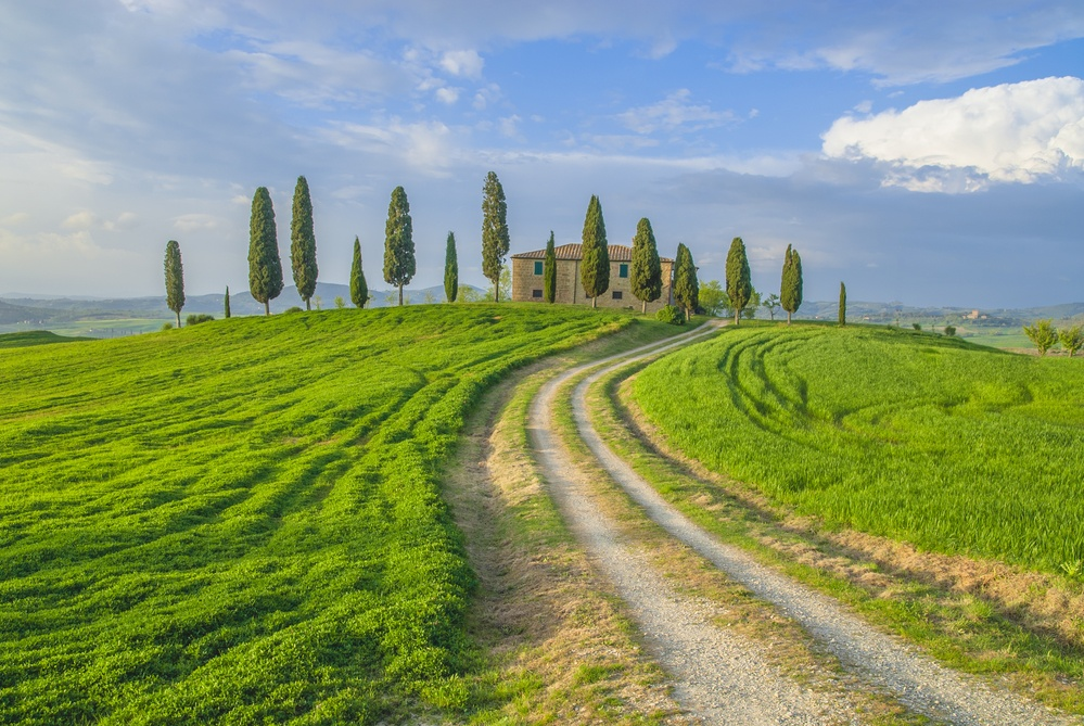 Tuscany_Country_Road